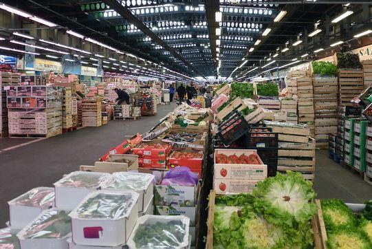 Http Hosbeg Com Wholesalers Retailers