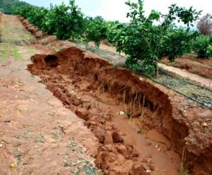 The effects of soil erosion for Soil is an example of